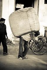 Viewsfromabus-18 (Ryan Opaz) Tags: street india bus delete10 delete9 delete5 delete2 delete6 delete7 save3 delete8 delete3 save7 delete delete4 save save4 save5 save6 2008 save1 ryanindiaryan opazryanopazasianovember