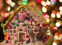 Gingerbread House (MissMae) Tags: christmas boy house bread ginger candy bokeh decoration gingerbread merry gumdrops savagephotography