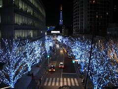 Keyaki St. with TokyoTower