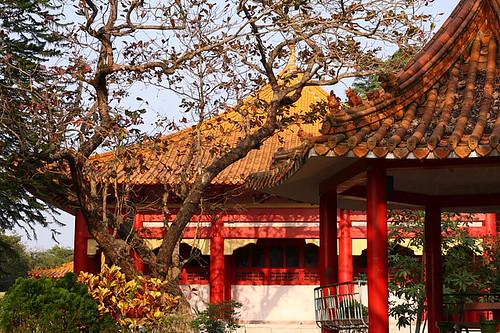 嘉義公園孔廟18