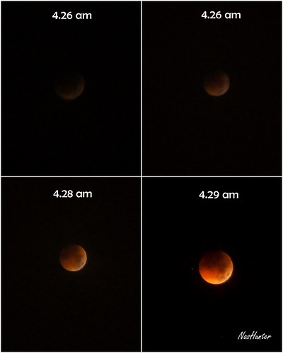 Eclipse 2011 - 3