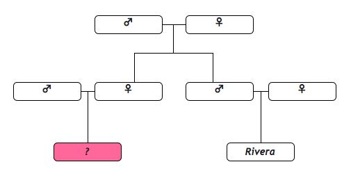 Árbol genealógico de una familia fascista