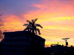 Fuego en el cielo (yazz20) Tags: city sunset sky orange color clouds atardecer ciudad silhouete colores cielo palmtree nubes silueta naranja palmera