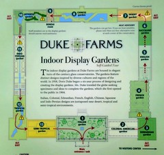 Doris Duke's Indoor Display Gardens (femme_makita) Tags: newjersey destroyed dukegardens dorisduke ddcf savedukegardens dorisdukecharitablefoundation joanesperopresident nannerlokeohanechair johnjmackvicechair harrybdemopoulos anthonysfauci jamesfgill annehawley peteranadosy williamhschlesinger johnhtwilson johnezuccotti