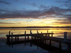 Bert-set (pominoz) Tags: sunset lake reflection bird clouds newcastle pier bert pelican nsw thumbsup lakemacquarie belmontsouth