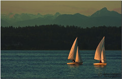 End of day sail. Alternative to expensive gas. (janusz l) Tags: vancouver geotagged boat sailing surrey sail crescentbeach whiterock expensivegas janusz leszczynski canon70200mmf28 geo:lat=49059695 geo:lon=122883196