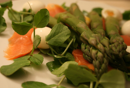 Pea Shoot, Asparagus, Smoked Salmon, Quails Eggs Salad