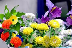 Colorful (K.Medeiros) Tags: auto flowers colorful belgium belgi mc 28 mm 135 antwerpen blgica 13528 flres samsunggx10 kristinemedeiros rexatar