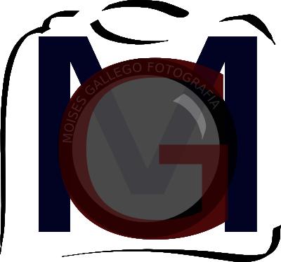 Moises Gallego Logo