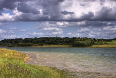 England: Bedfordshire Lakeside - Wooded Shore (Tim Blessed) Tags: uk sky lake nature water clouds landscape countryside wind reservoir singlerawtonemapped