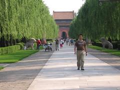 China-0536