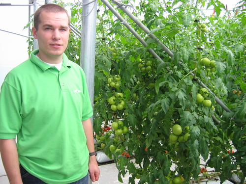 Me & the tomatoes