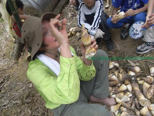 你拍攝的 53老師講解辨識竹筍。