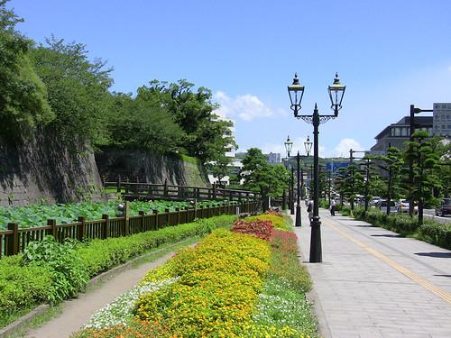 Kagoshima 3