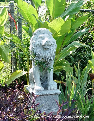 Corner Lion