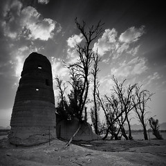 Secret Keepers (Ageel) Tags: old trip travel trees sunset sky bw cloud white black tree art history hail clouds d50 square lens landscape big nikon desert squares fineart sigma kingdom wideangle explore saudi sa 1020mm sq saudiarabia bnw squared ksa sigma1020mm     explored amazingphoto   ageel    bwsquare