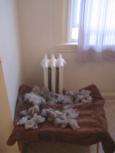 Drying Fleece