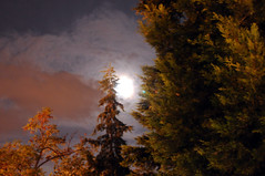 moon in autum (evamathemat) Tags: moon nature eva autum full greece thessaloniki salonika kalamaria abigfave ultimateshot betterthangood evamathemat ubej imagescollectors