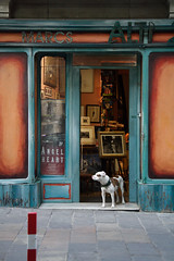 Dtail de Barcelona (Eric Dupuis) Tags: barcelona door windows espaa orange dog chien wall architecture angel spain puerta europe heart alt turquoise perro porte espagne barcelone marcs angelheart ericdupuis thebestofday gnneniyisi