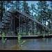 Crosby Arboretum In Memoriam - Edward Blake, ASLA