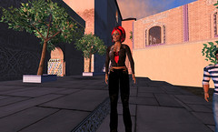 Virtual Pioneers Presentation for the DEN in SL-15.png
