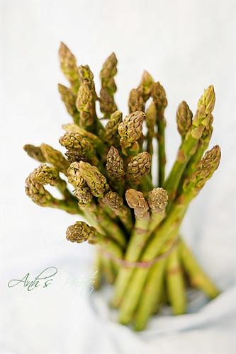Asparagus Study #2