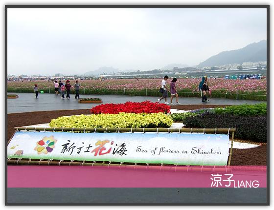 新社花海14