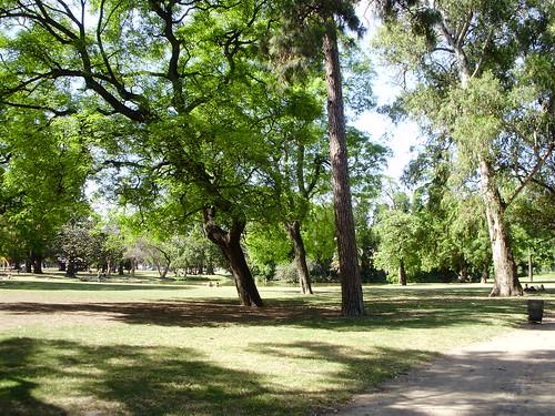 Jardin Japonés Greenery