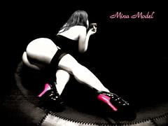 MINA_model.