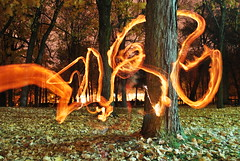 set you on fire- light graffiti (.Cline.) Tags: longexposure trees leaves night fire long torch shutter lightgraffiti celine holzer mtlunguessed celineholzer