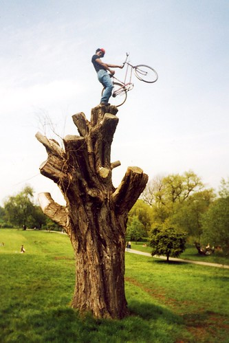 Treebike