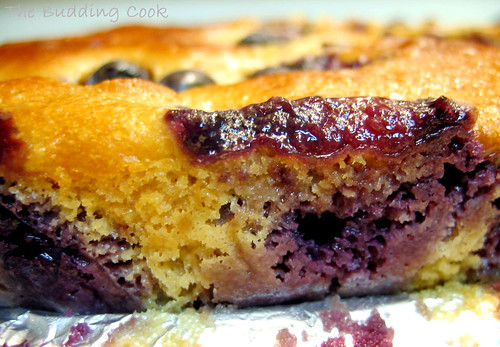Blueberry Cornmeal Cake2