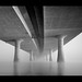 Foggy Morning Under The I-205 by navdog