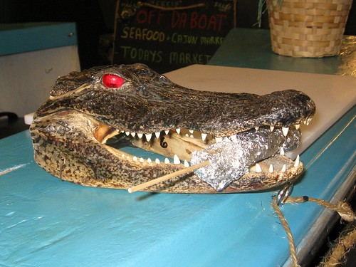 scary alligator at the french market