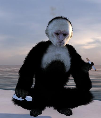 Zooby Monkey Avatar