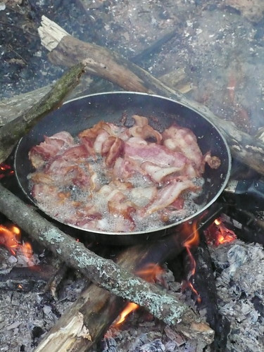 Bacon over the campfire
