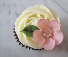 pink blossom cupcake (tam mabley-chaisson) Tags: flowers cupcakes blossom sweets icing gumpaste cakedecorating royalicing tamjaicupcakescakedecoratingicingroyalicinggumpasteblossomflowerssweets