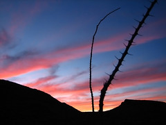 Sunset in Big Bend Ranch State Park