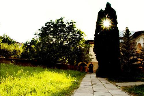Sfântul Ioan Suceava - călugăr  (  monk )