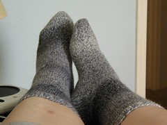 The Grey Socks