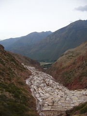 Salinas bassins de sel