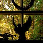 An Angel In My Window …!!! :)))