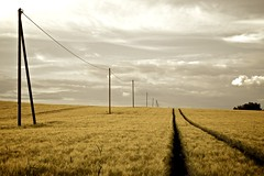 Photo 'The Fields Energy' by Pascal Hertleif