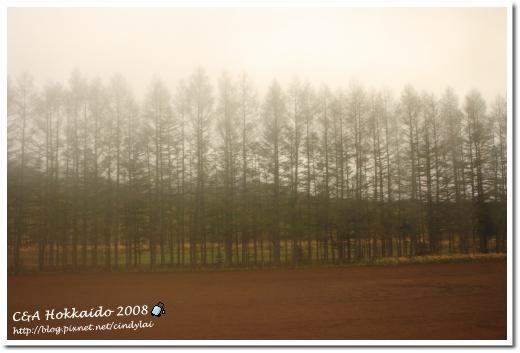 Hokkaido_0439