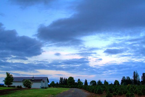 Sky Drama - clouds in an evening sky in Stayton Oregon