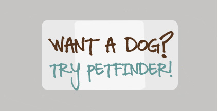 Search Petfinder