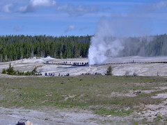 Beehive geyser