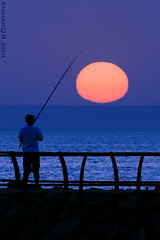Catching the Sun !! (Ammar Alothman) Tags: blue sunset sea sun water yellow canon landscape photo fisherman photos kuwait  2008 ammar kuwaitcity kw q8 400mm     vwc ammaralothman  canonef400mmf56lusm kuwaitpictures  canon400 showaikhbeach  kuwaitiphotographer kuwaitphoto kuwaitphotos ammarphotos ammarq8 ammarphoto ammarphotography kuwaitpic kuwaitpictrue whereiskuwait kvwc kuwaitvoluntaryworkcenter  kuwaitvwc ammarq8com  ammarphotocom