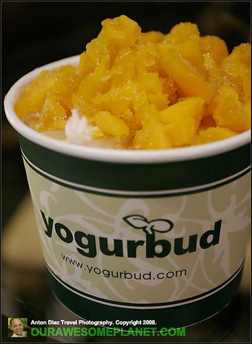 Yogurbud-5