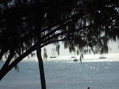 Magnetic island (zgreatscot) Tags: sailing ye june2008 mackaytownsville